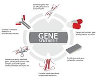gene-synthesis